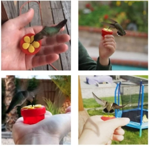 fathers day gift idea humming bird hand feeder for dad